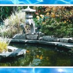 Floatron for Pond Algae - floatron UK