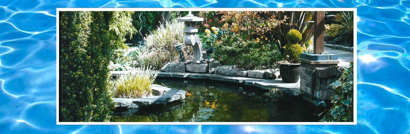 Floatron for Pond Algae